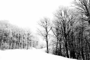 snowmagicvermont